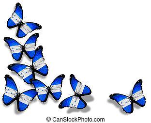 Honduras flag butterflies, isolated on white background