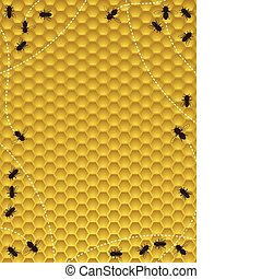 Honey bees moving around the hive - border or background