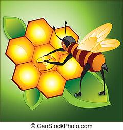 Honey bee working on honeycomb