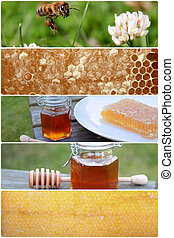 Honey collage, close up image