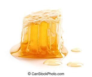 honey combs macro