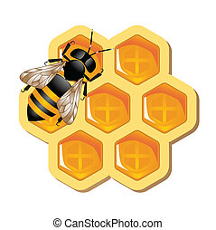 Honey Concept - Conceptual vector representing working bee...