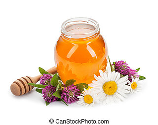 honey, daisies and clover isolated on white background