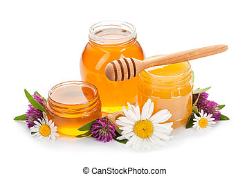 honey, daisies and clover isolated on white background.
