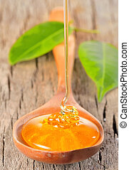 Honey dripping in a wooden spoonful