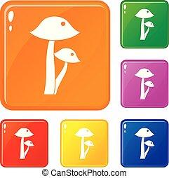 Honey fungus icons set vector color