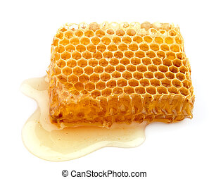Honey honeycombs on a white background