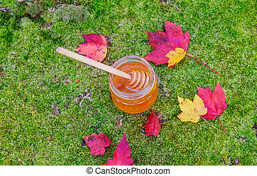 Honey in a glass jar with flowers melliferous herbs on wooden surface.