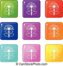 Honey plant icons set 9 color collection