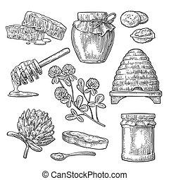 Honey set. Jars of honey, bee, hive, clover, spoon, honeycomb.