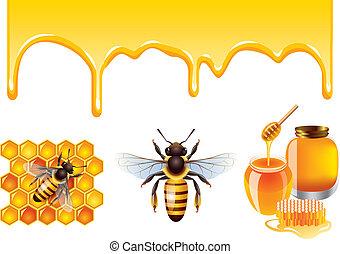 honeycells, vector, abeja, miel, conjunto