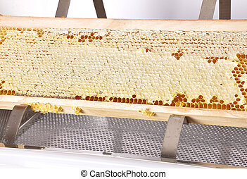 Honeycomb at plastic uncapping tub on white