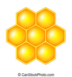 Honeycomb, isolated on the white