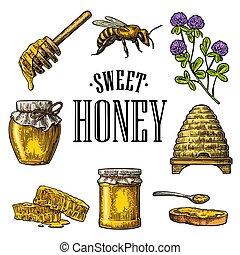 honeycomb., vendange, set., abeille, illustration, miel, vecteur, miel, ruche, pots, gravé, trèfle