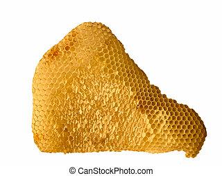 Honeycomb with honey isolated