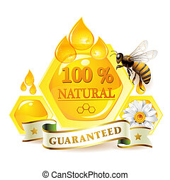 Honeycombs and bee