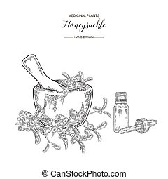 Honeysuckle branch ripe berries and wooden mortar. Lonicera japonica. Medical plants hand drawn. Vector botanical illustration. Black and white graphic.