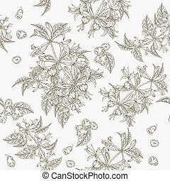 Honeysuckle flowers and berries seamless pattern. Lonicera japonica. Vector illustration. Design for textile and packaging. Engraving style.
