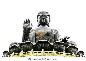 hong, boeddha, kong
