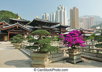 hong kong, landscape