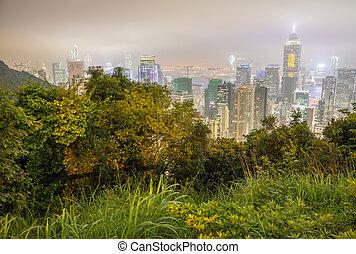 Hong Kong night skyline with vegetation