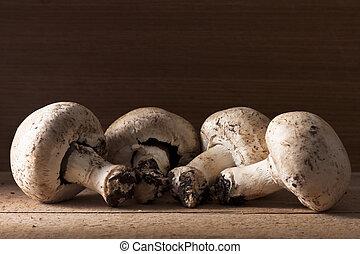 hongos, champignon