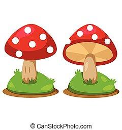 hongos, ilustrador
