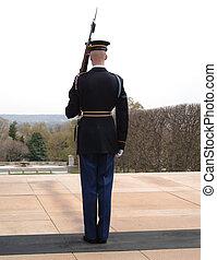 Honor Guard at Arlington Cemetery, Washington DC