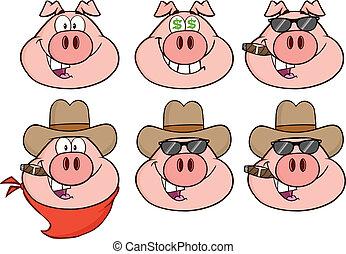 hoofd, 3, set, verzameling, varken