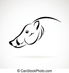 hoofd, beeld, vector, ontwerp, achtergrond, beer, witte