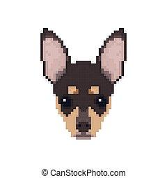 hoofd, chihuahua, kunst, pixel, style.