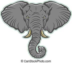 hoofd, elefant