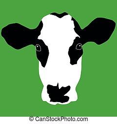 hoofd, koe