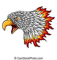 hoofd, mascotte, adelaar, vlammen, spotprent