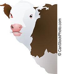 hoofd, vector, illustratie, cow's