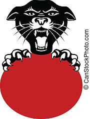 hoofd, zwarte panther