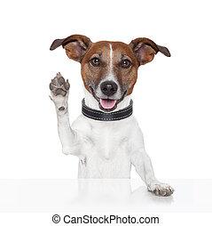 hoog vijf, hallo, tot ziens, dog
