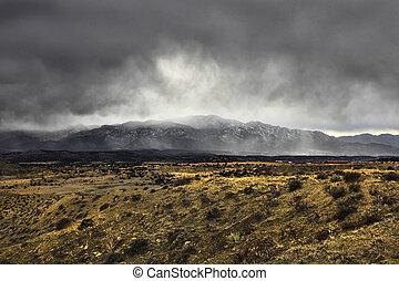 hoog, woestijn, snowstorm