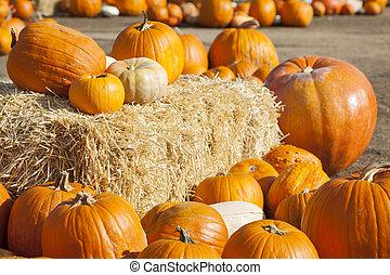 hooi, sinaasappel, fris, pompoennen, vatting, herfst, rustiek