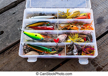 Hook for fishing in the box