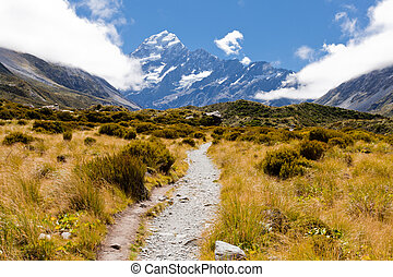 Trail through tussock in Hooker Valley, section of a track leading to Aoraki, Mount Cook, highest peak of Southern Alps, an icon of New Zealand partially covered in clouds