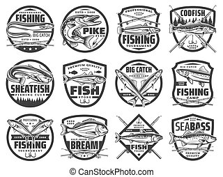 hooks., pescatore, verghe, fish, club, pesca