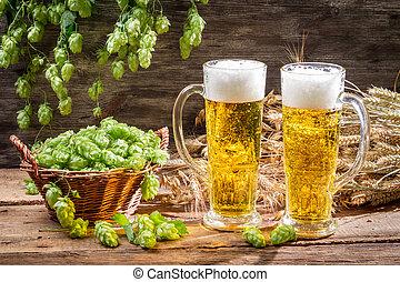 hop, bier, omringde, koude, kegel