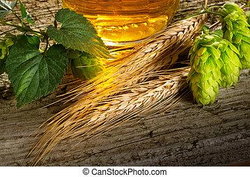 Hop Cones And Barley - still life with beer hops and barley