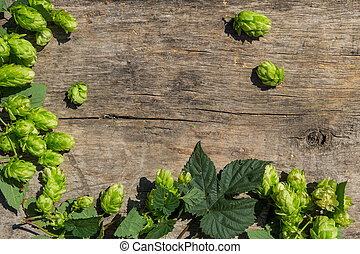 Hop cones on rustic wooden background. Ingredient for beer production