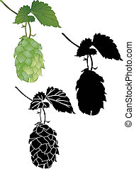 Hop culture agriculture plant vector