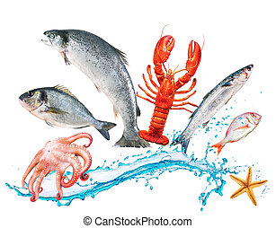 hop, fish, watersplash