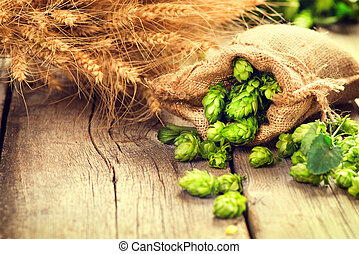 Hop in bag and wheat ears on wooden cracked old table. Brewery concept