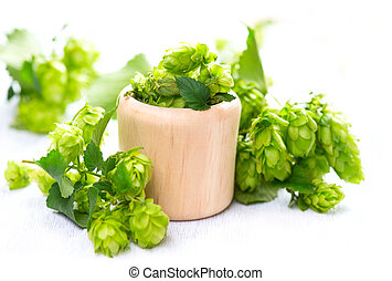 Hop in wooden bowl over white wooden table. Green whole hops with leaves closeup