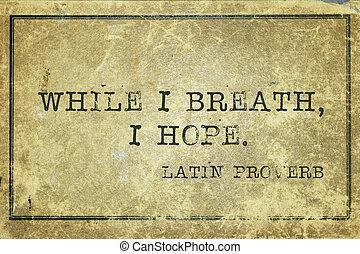 hope breath Proverb - while I breath, I hope - ancient Latin...